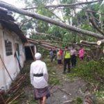 2 Desa di Blitar Diterjang Angin Kencang, 11 Rumah Rusak Tertimpa Pohon Tumbang